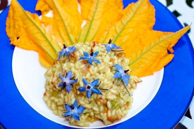 fior di risotto